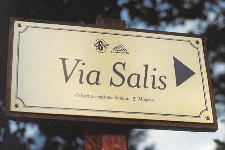 Via Salis