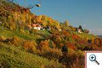 Südsteirisches Weinland (Foto: Gerolf Forster)